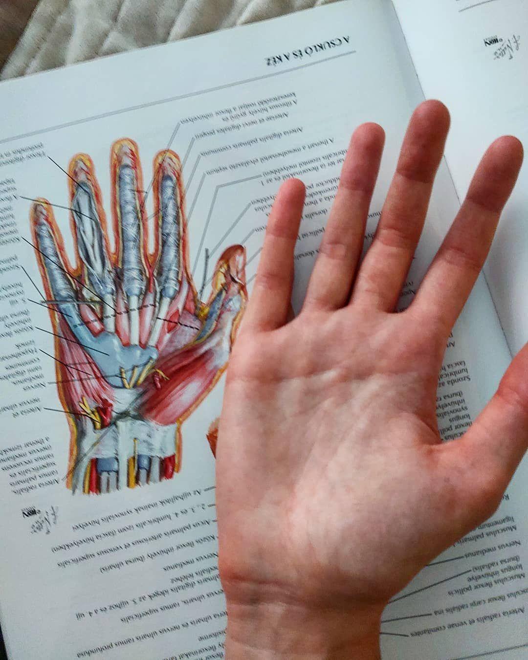 csukló ligamentum töréskezelés