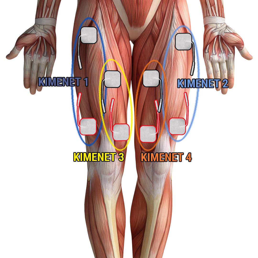 a lábak ízületei és izmai fájnak mint kezelték)