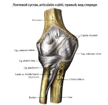 Az ecset artrózisos kezelésének duzzanata.